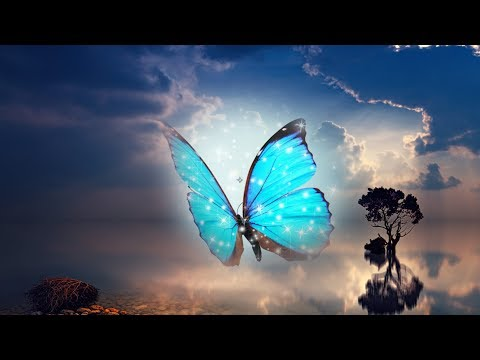 Peaceful Relaxing Instrumental music, Piano soothing Music with birds singing