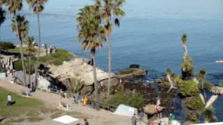 A Look Around La Jolla Cove in La Jolla Ca