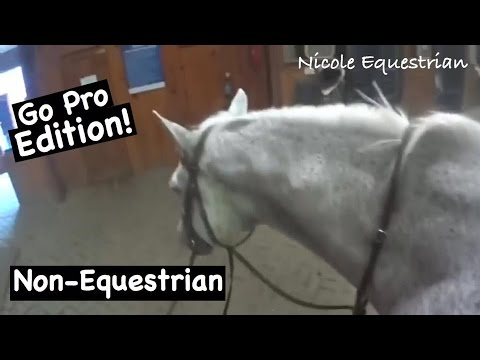 NON EQUESTRIAN DOES MY VOICE OVER