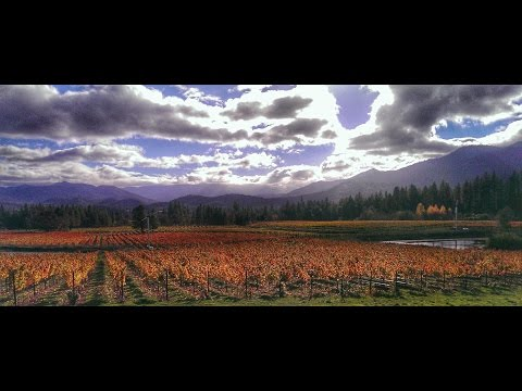 Wine Country - Travel Medford TV Commercial
