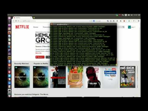 watch netflix on your ubuntu desktop