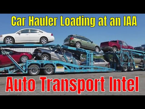Shipping Cars From An Auto Auction With Bailey's Auto Transport