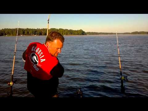 Catfishing Lake Oconee Ga  46lb Flathead