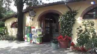 Tour of Norcenni Girasole Club in Figline Valdarno by Demoet TV