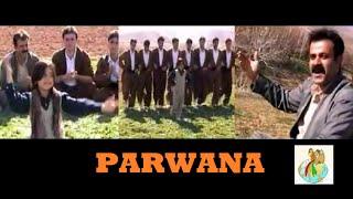 Parwana - Kurdish Music Halparke