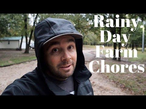 Farm Chores STOP When it Rains... Right?