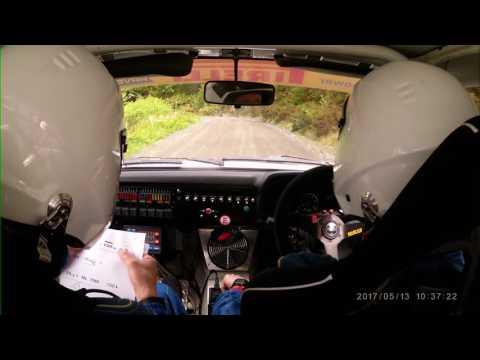Plains Rally 2017 - David And James Young - Stage 3