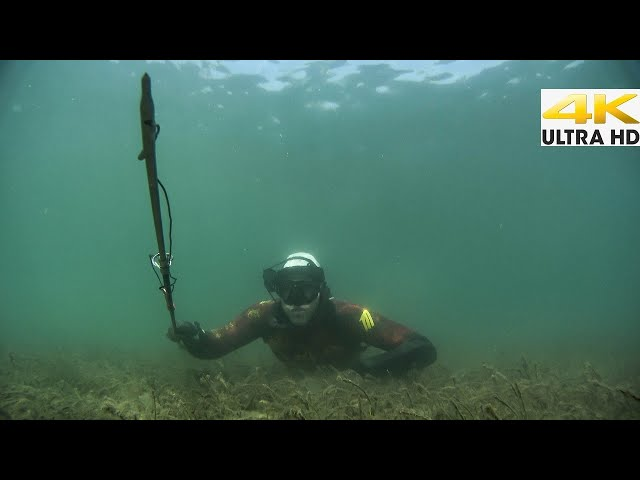 LARGE SEABASS THE FULL METHOD📓My Best Tips for Beginners |Spearfishing Life 🇬🇷 [4K]✅