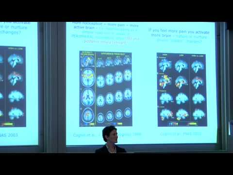 Understanding Human Pain, suffering and relief through brain imaging