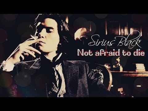 ►  Sirius Black [The Marauders] || Not afraid to die [1500+subscribers!!!]