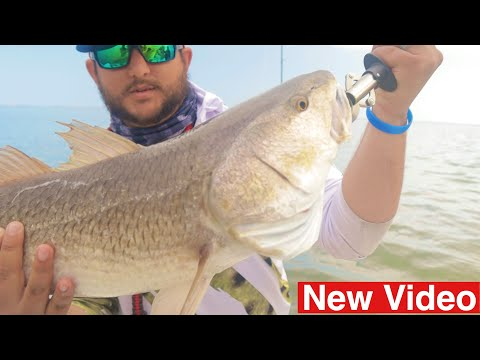 Oversized RED!! Fishing South Padre Island | Port Isabel, TX 2019