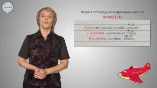 Уроки русского Изменение глаголов по родам
