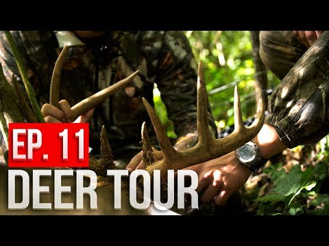 PUBLIC LAND CHALLENGE - DAY 2:  Packing A BUCK Out Of The Woods!