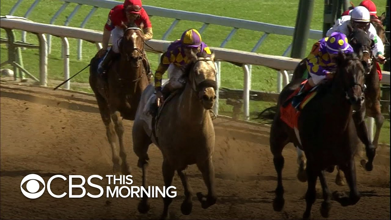 Horse racing reaches critical moment following rash of deaths
