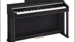 Электронное Пианино. Сравнение Цифрового Casio и Акустического Рояля. Как Выбрать Электропианино