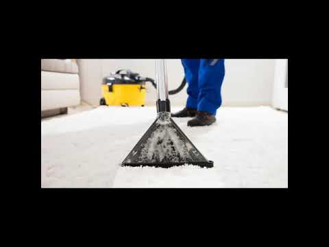 Carpet Cleaning Companies Las Vegas Nv Two Birds Home