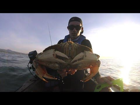 MONSTER DUNGENESS CRAB From A Kayak, Deadliest Catch(California Style)