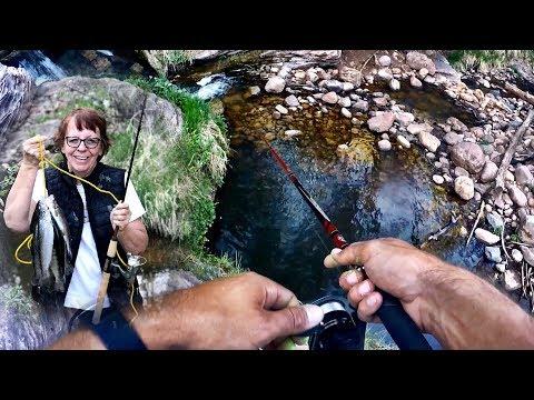 Woods Canyon Lake | Arizona Trout Fishing