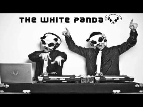 white panda gangnam style