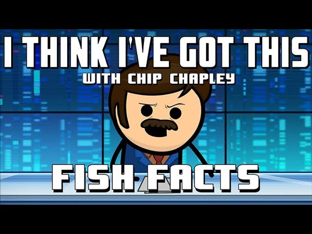 i-think-i-ve-got-this-with-chip-chapley-episode-1-fish-facts