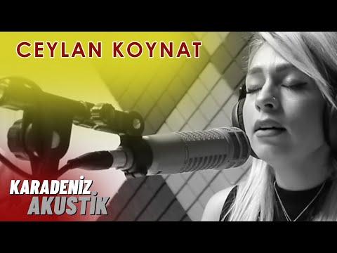 Ceylan Koynat - Ordunun Dereleri (Karadeniz Akustik)