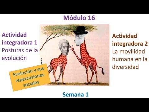MDULO 16 Semana 1  Actividades integradoras 1 y 2  Prepa-SEP