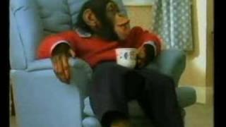 PG Tips (tea) chimps Xmas advert 1992