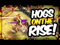 TH 10 HOG RIDER 3 STAR ATTACKS ON THE RISE! | TH 10 Vs TH 10 HOG RIDER TRIPLES | Clash of Clans