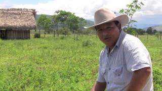 Indígenas Uwa apuestan por un futuro sin petróleo