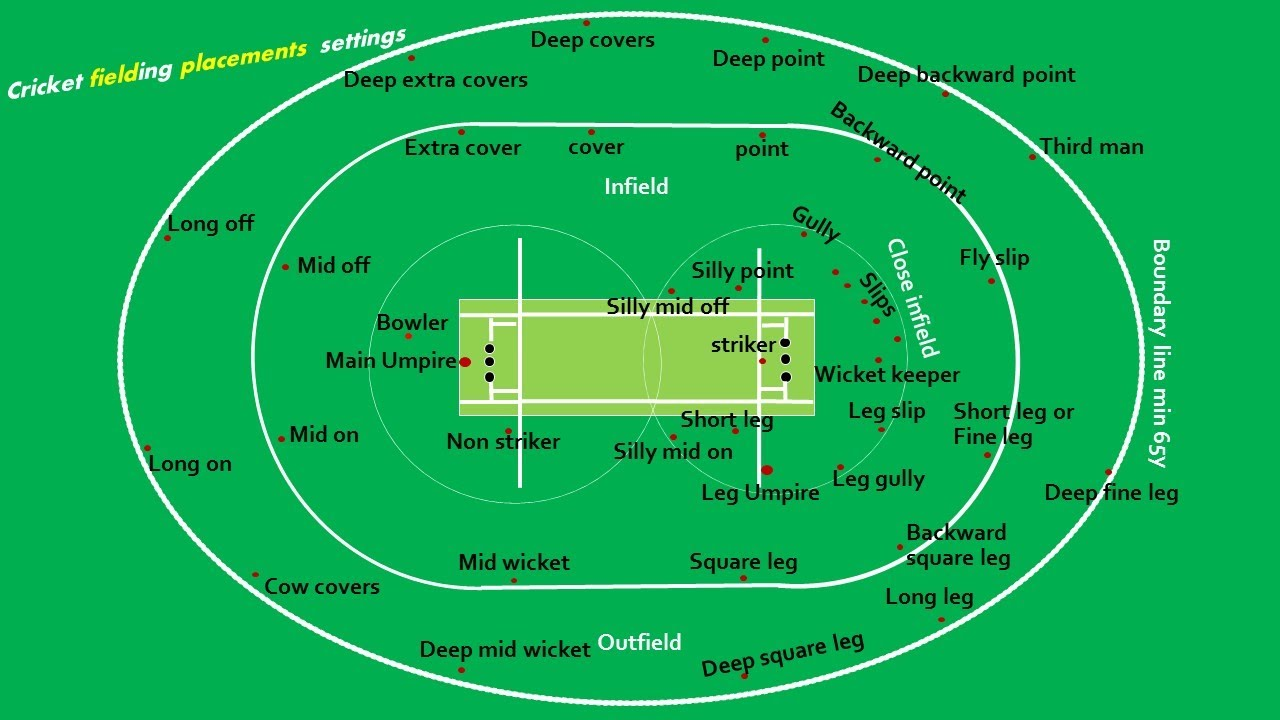 hight resolution of cricket pitch easy marking plan