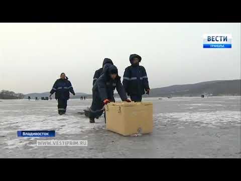 На льду бухты Новик прошли практические занятия зимней школы «Ice Mechanics» 480