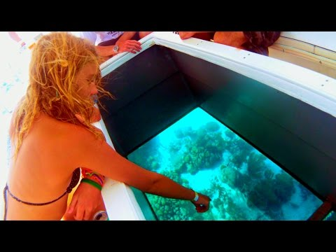 Glass Bottom Boat Tours - Key West, Florida