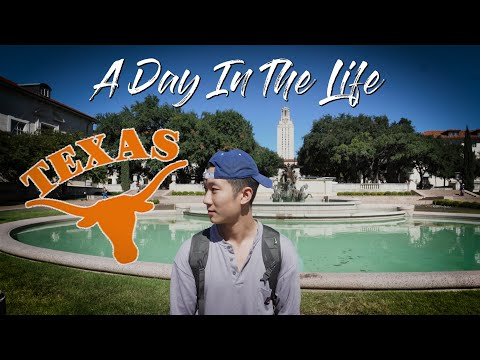 A Day In The Life At UT Austin