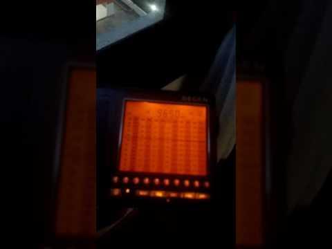 Radio Guinea - Degen DE 1103