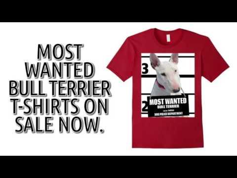 Bull Terrier T-Shirt - Men's, Women's, Kids - Green, Navy Blue, Red, Brown etc.