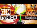 GIN TÔNICA - Como Fazer - Papo Bebo Drinks #29