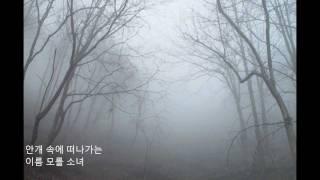 김정호  -  이름모를소녀.wmv