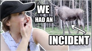 WE HAD AN INCIDENT   Somers In Alaska