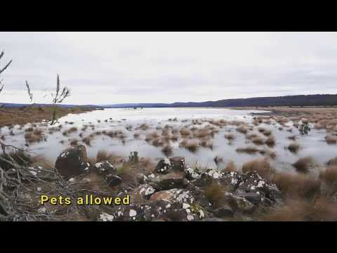 Bronte Lagoon Camping Area Central Highlands Fly Fishing Tasmania