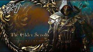 Elder Scrolls Online // Первый смотр // Похождение храмовника #1