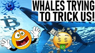 WHALES ARE TRYING TO TRICK US! - SAME THING STARTED THE LAST BULL RUN! - CHAINLINK & CARDANO!