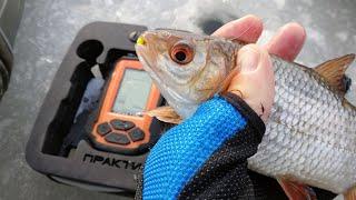 УРА ДОЖДАЛИСЬ Первый лед 2020 21 рыбалка на мормышку Ловля плотвы и окуня по первому льду