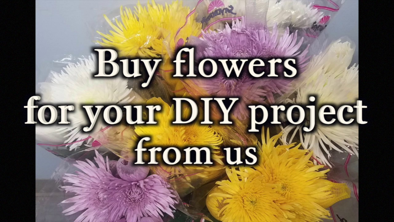 Bulk Flowers For Your Diy Project Youtube