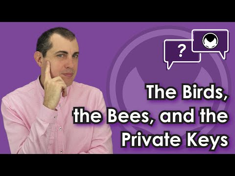 Bitcoin Q&A: The Birds, the Bees, and the Private keys