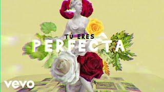 Luis Fonsi, Farruko - Perfecta (Lyric Video)