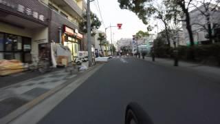 会社がある六木から亀有のもつ焼き屋までの毎日の道のりを桜の季節に乗...