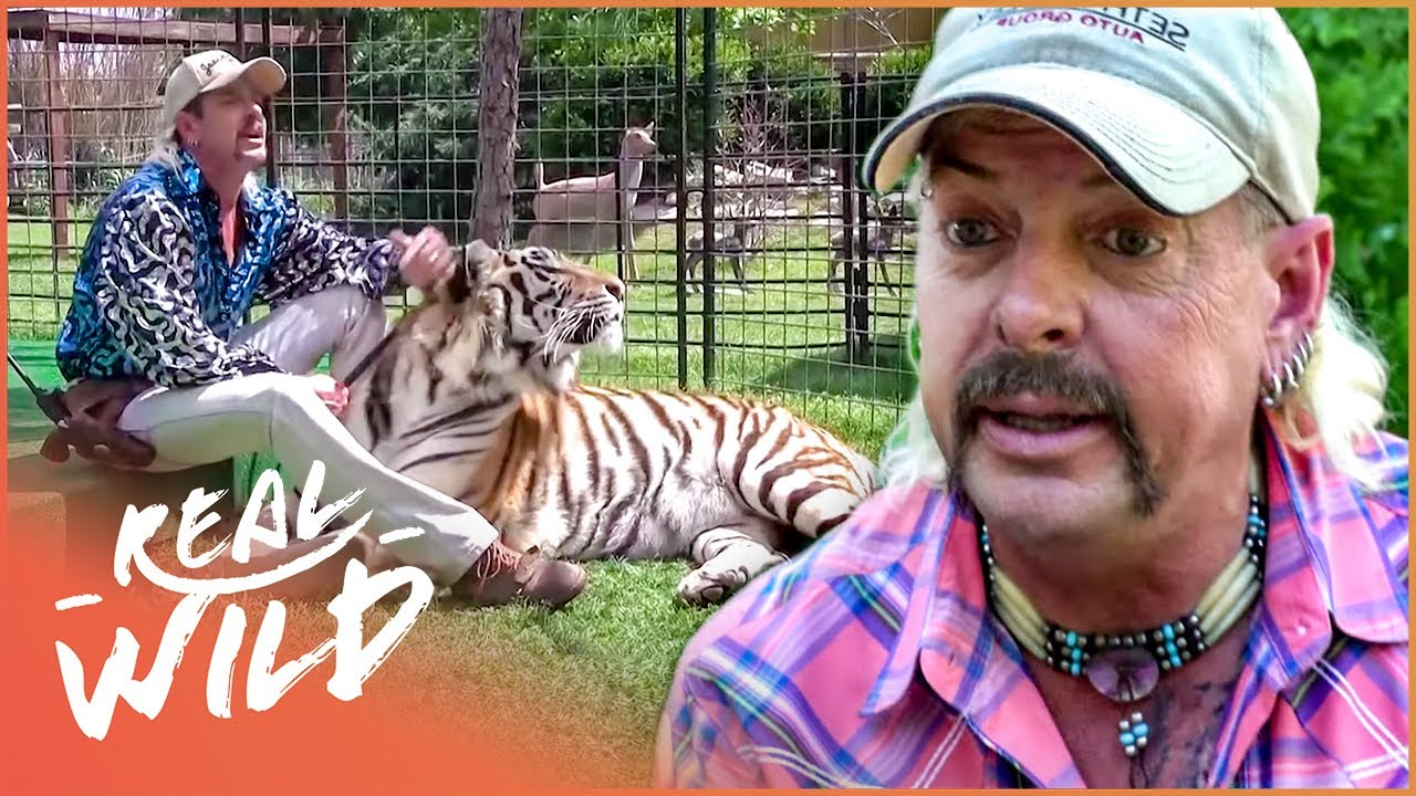 Joe Exotic: The Story Of The Tiger King | Predator Pets | Real Wild