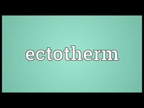 Ectotherm Meaning