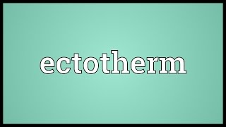 Download lagu Ectotherm Meaning MP3