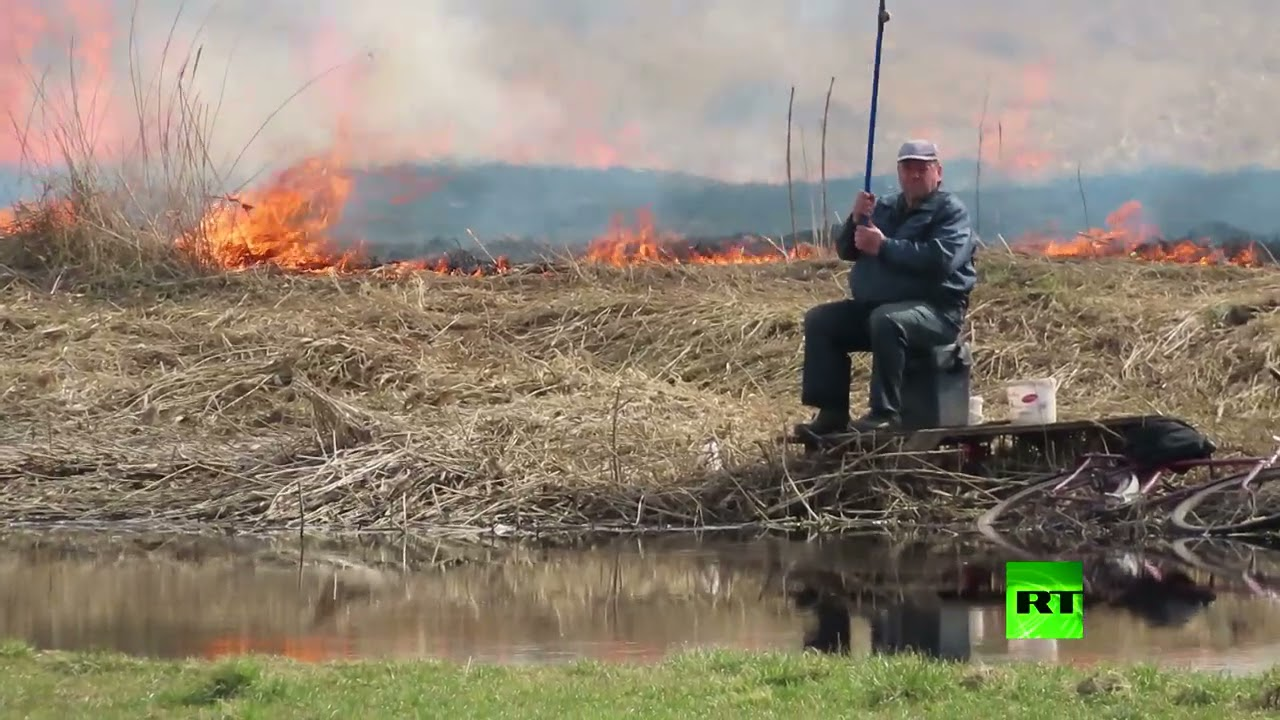 شاهد.. رجل يواصل صيد الأسماك رغم حريق يقترب منه  - نشر قبل 4 ساعة